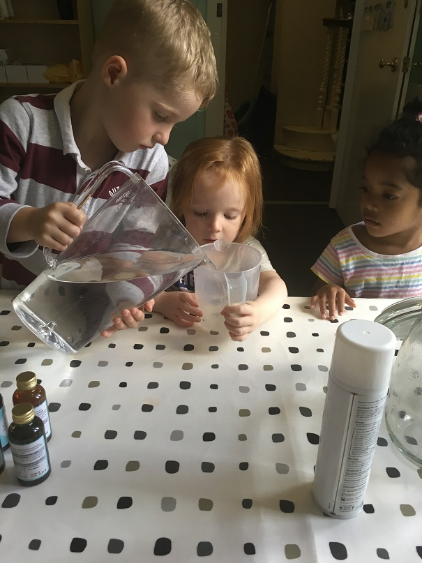 Our Little Scientists!