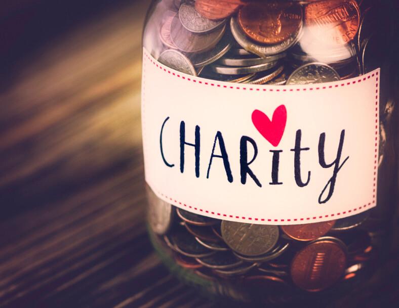 Santa Toddle Charity Donations
