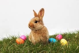 Maureen's Easter Update